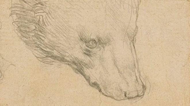 Da Vinci'nin çizimi servet değerinde satılacak