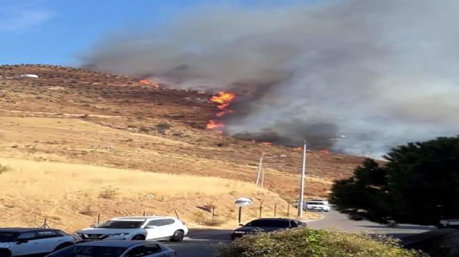 İzmir'de makilik alanda yangın!